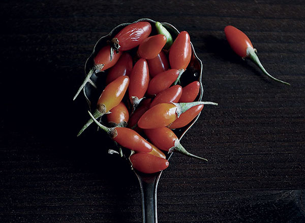 goji-berry-image